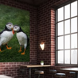 Buy puffins whispering mockup2